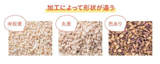 もち麦p007-2.jpg