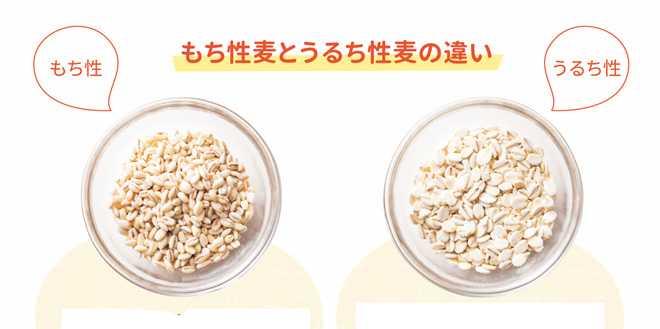 もち麦p004-1.jpg