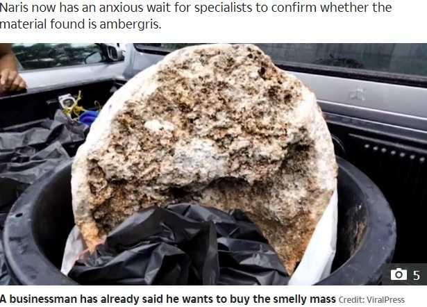 大きな塊の一つ(画像は『The Sun 2020年11月30日付「MOBY SICK Penniless fisherman finds 'world's largest-ever' blob of whale vomit worth £2.4MILLION because it's used in perfume」(Credit: ViralPress)』のスクリーンショット)